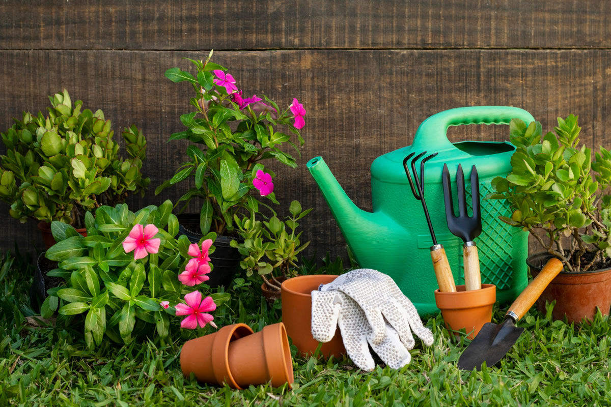 Four Tips for Proper Gardening at Your Apartment