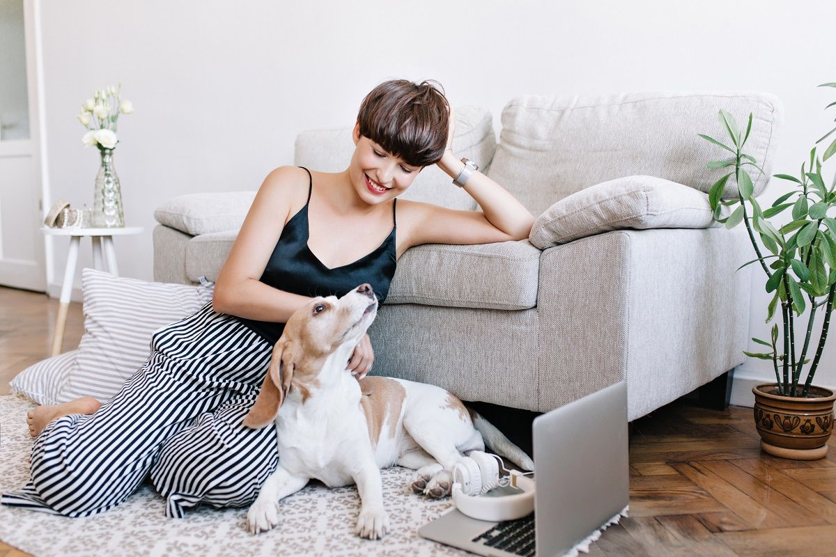 Five Tips on How to Live with Your Dog in Your Apartment